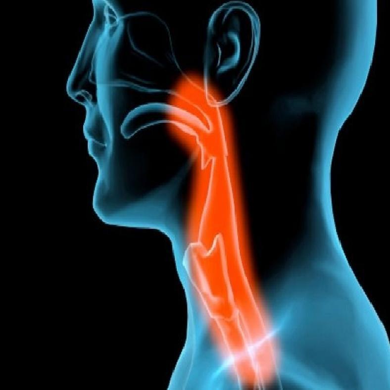 A humán papillomavírus és a szájüregi daganatok | ifal60.hu