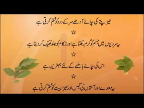 giardia pot urdu nyelven