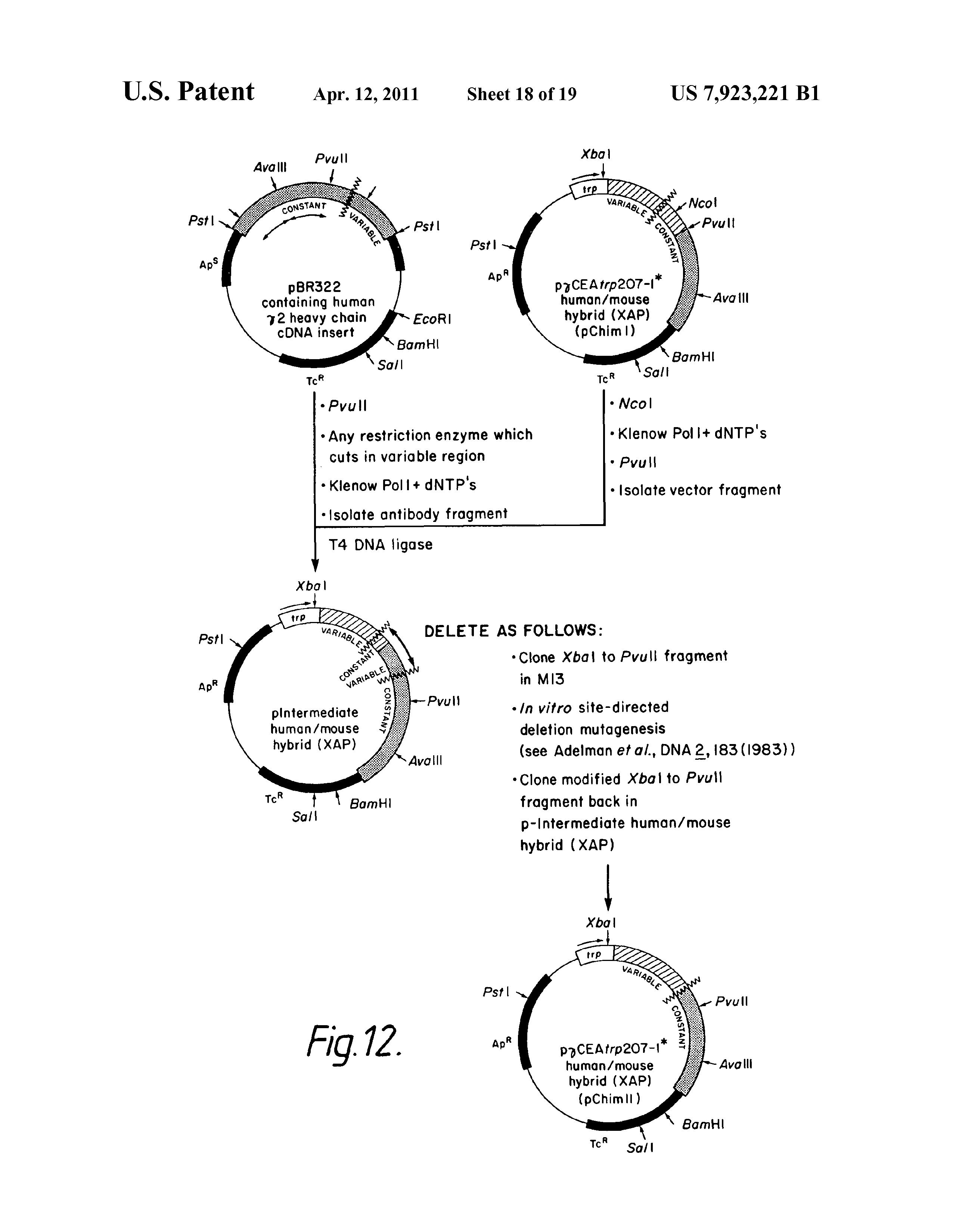 humán papillomavírus vakcina hcpcs