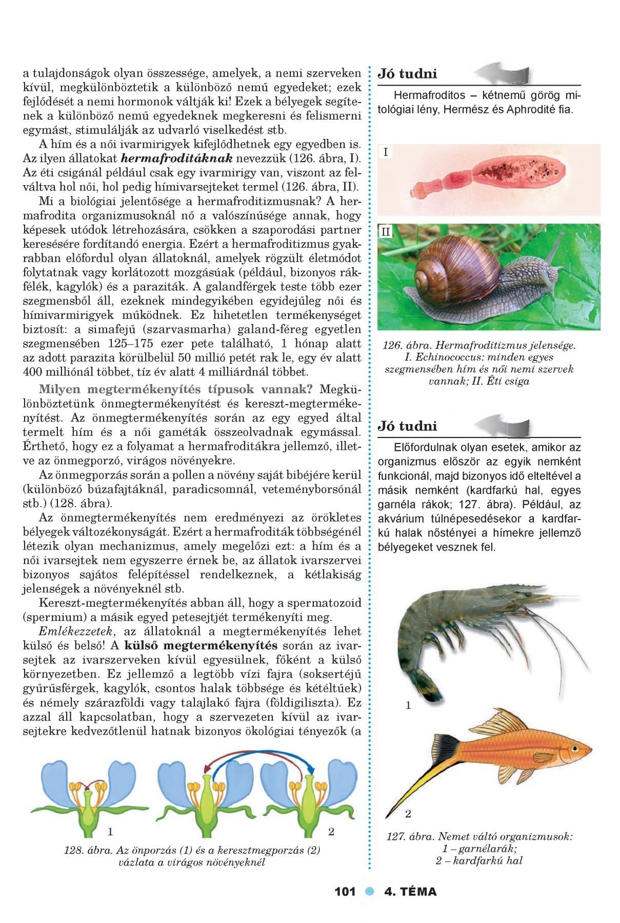 A paraziták mindkét oldalon, Tüdőgyulladás – Wikipédia