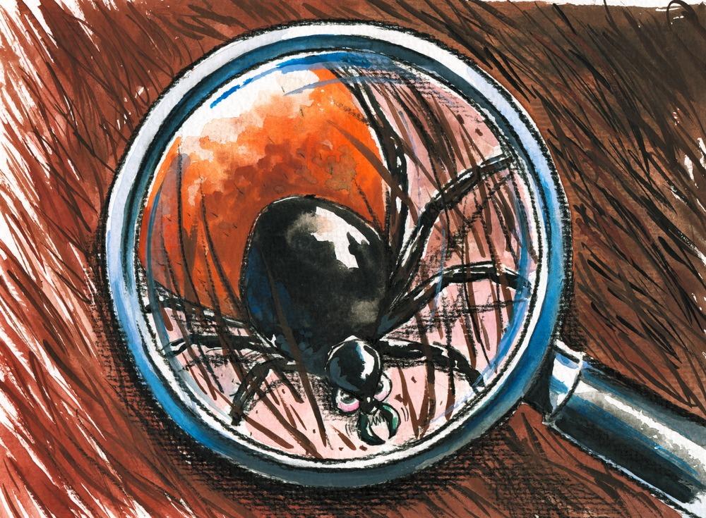 Készítmények bőrparazitákhoz Csepp parazitaellenes delix f
