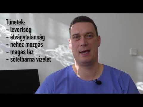 a helmintás étrend kezelésében)