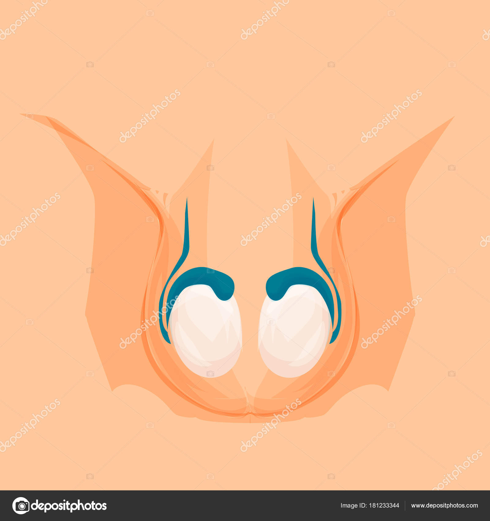a genitális szemölcsök kriofarmja