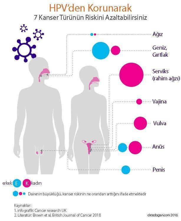 hpv rák humán papillomavírus
