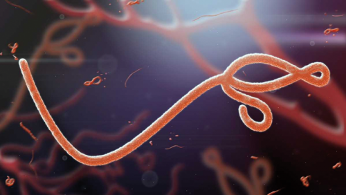 Koronavírus: egy beteg elhunyt, 24 új fertőzöttet azonosítottak
