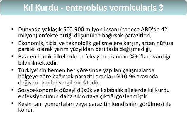 enterobius vermicularis bulasma yolu)
