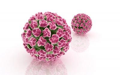 A férfiakra is komoly veszélyt jelent a HPV-vírus