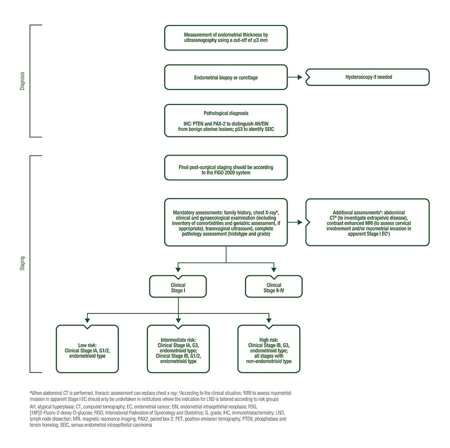endometrium rák esmo irányelvek)