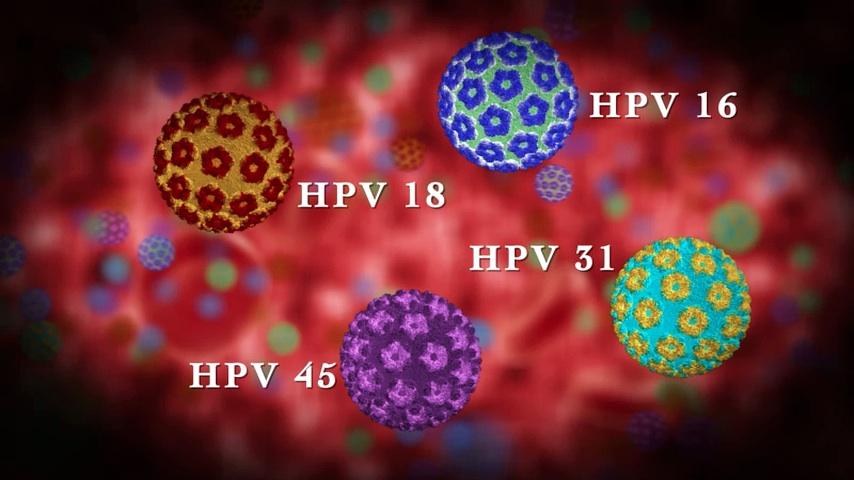 16. és 18. típusú papilloma vírus