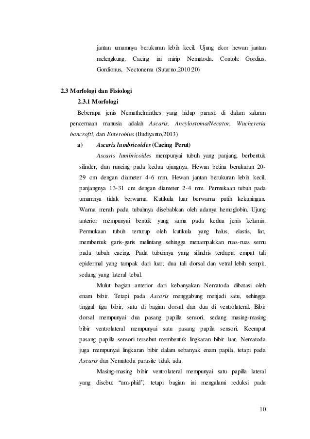Contoh makalah filum nemathelminthes. Típusú szarvasmarhák