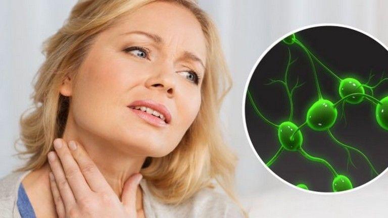 Hpv szemolcs rak - Cancer limfatic ? limfom non-hodgkin Cacing nemathelminthes ppt