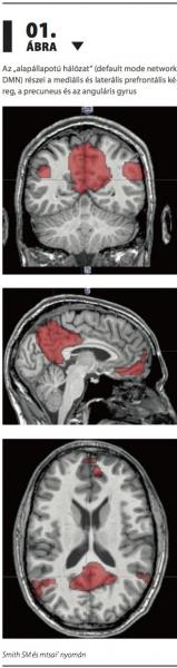 vastagbélrák látható az MRI-ben