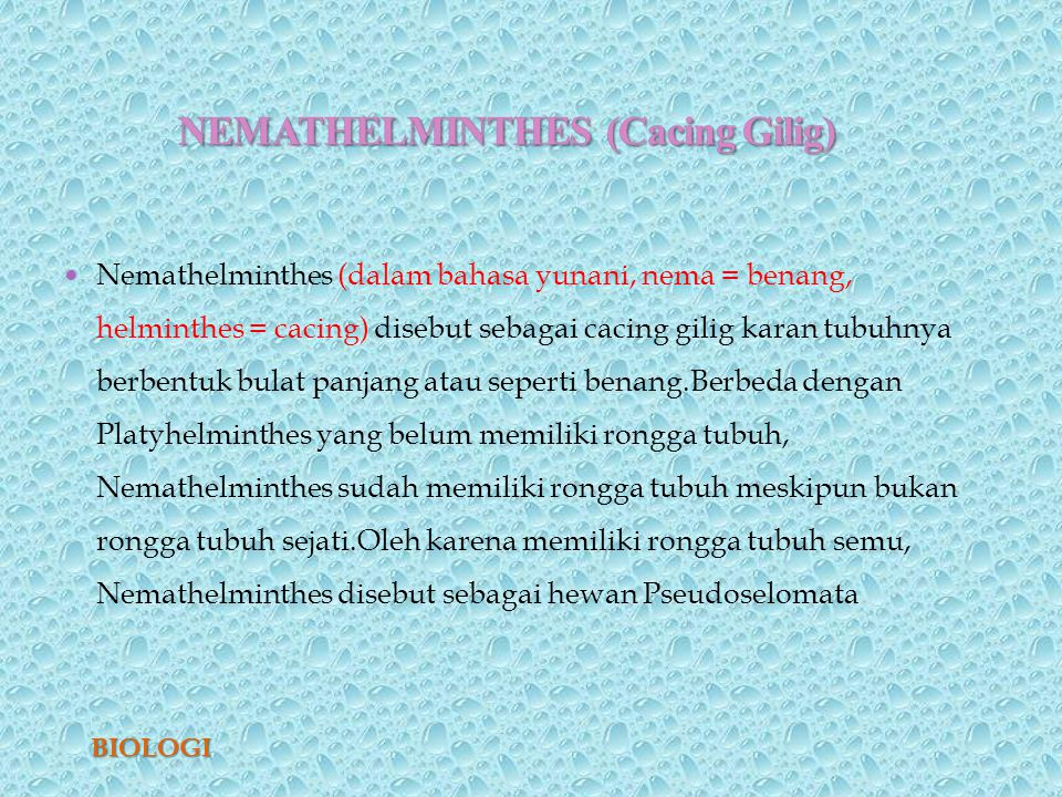 nemathelminthes peranan dalam kehidupan