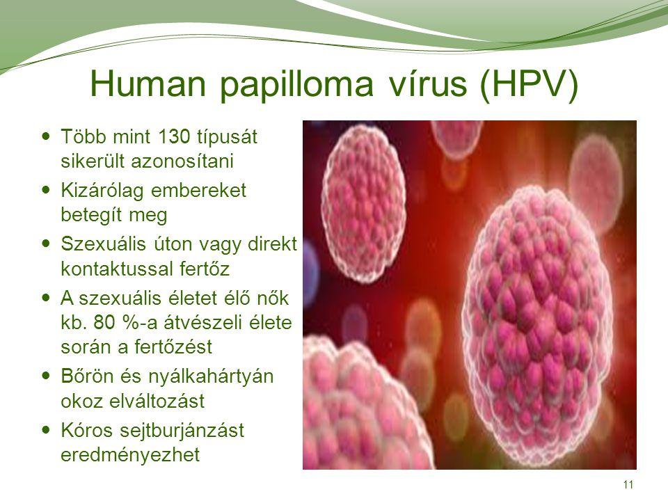 condyloma genitális tünetei a méhnyaknak)
