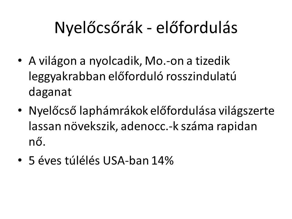 neuroendokrin rák epehólyag)