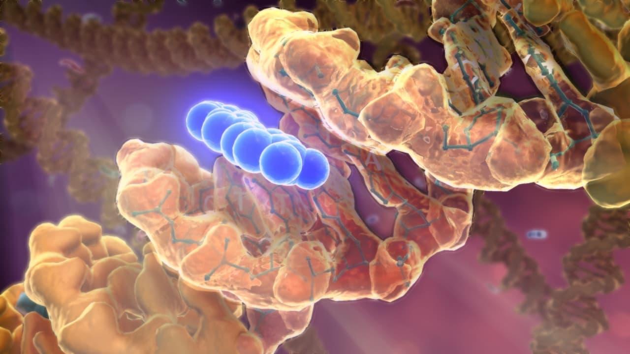 a rák genetikai, de nem öröklődik)
