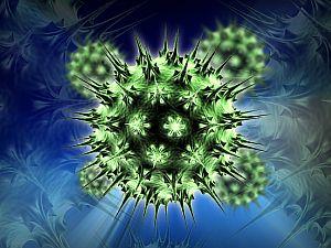 hpv vírus és vastagbélrák)