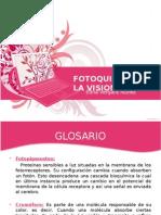 enterobiasis portugálul)