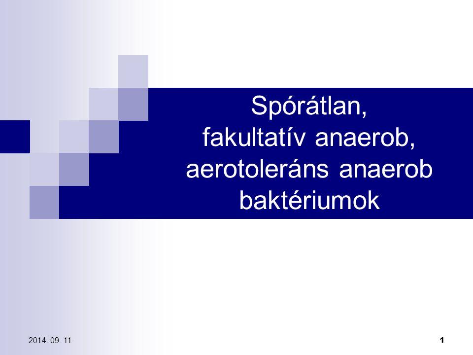 anaerob baktériumok