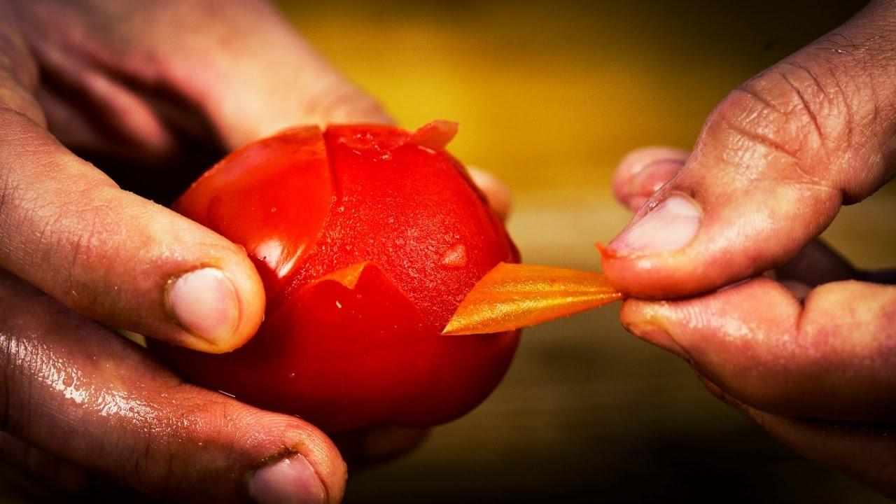 Paradicsomféreg: Hogyan lehet megszabadulni a paradicsomfenyőktől - Sanne kertek