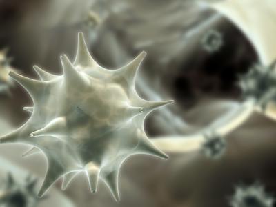 a papilloma vírus rák