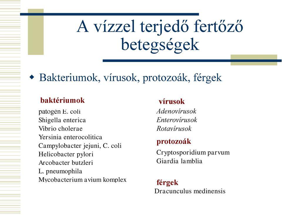 cryptosporidium giardia ivóvízkezelés