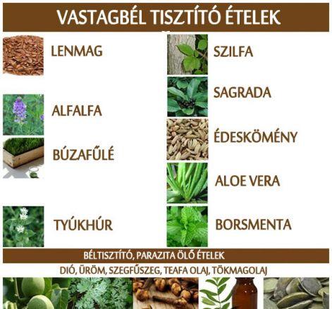+ Best Méregtelenítés images in | méregtelenítés, egészség, egészséges életmód