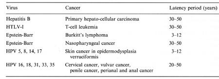 hpv vírus és leukémia