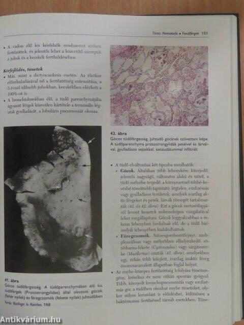 állatorvosi helmintologie kassai tibor)