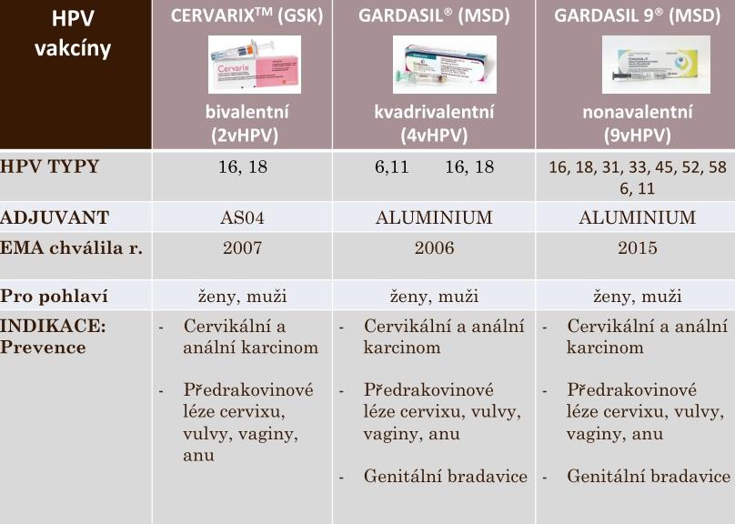 Dr. Ipóth válaszol: Nyár és a nőgyógyászati problémák - ifal60.hu