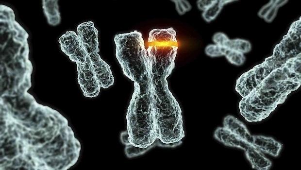 rák és genetikai változások)