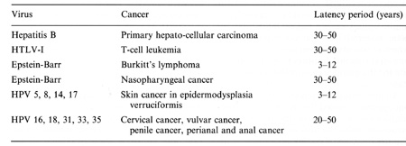 A humán papillómavírus és a rák